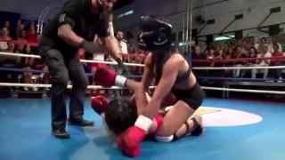 PANICATS_ DESAFIO DA LUTA LIVRE actresses mma on tv